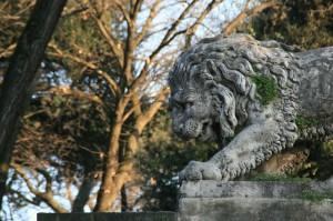 Lions des arts